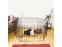 Rabbit, Guinea Pig, Hamster, Small Animal Playpen - 8 Pannels