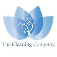 light commercial cleaning