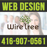 Expert Web Designer - Wordpress Website Development - Ecommerce