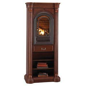Ventless Fireplace   eBay