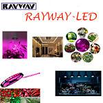 RAYWAY-LED