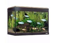 Brand new 90l Fish Tank