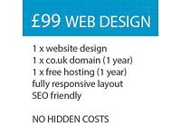 Professional web site design with CMS software