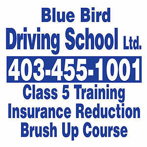 BLUE BIRD DRIVING SCHOOL ➖25$OFF