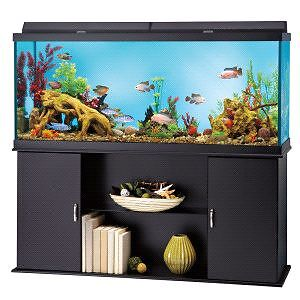 120 gallon aquarium stand