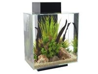 Fluval 46L fish tank with light, filter, thermometer and accessories