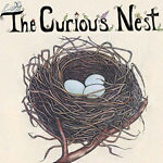 The Curious Nest