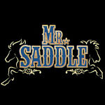 Mr.Saddle
