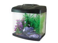 Aquastart 320 in grapite with light, lid and filter