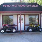 Pro Action Cycle