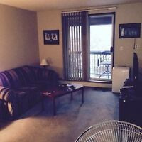 1 Bedroom Apartment Available March 1