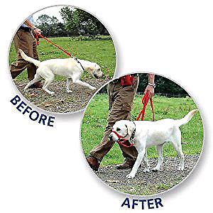 HALTI HEAD COLLAR for medium/large breeds (gentle leads)