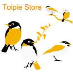 Toipie Store