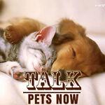 TalkPetsNow