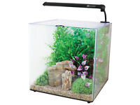 Aqua Aspire 55 litre glass square fish tank