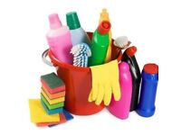 Experienced domestic cleaner covering Paignton/Torquay/Newton Abbot areas