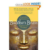 Buddha's Brain: The Practical Neuroscience of Happiness (NEW)