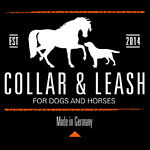 Collar & Leash