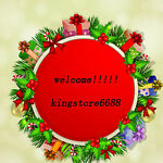 kingstore6688