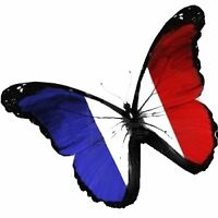 French Teacher for Professionals & Students 20$/Hr
