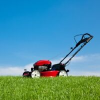 LANDSCAPING: Lawn Mowing / Hedge-trimming / Weeding & Flowerbed