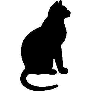 Missing Black Cat - LETITIA HEIGHTS area - 11 yrs old