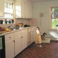 Old kitchen cabinets
