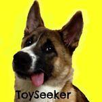 ToySeeker