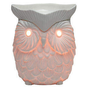 Scentsy warmers & bars
