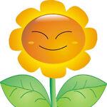 sun-flower-star