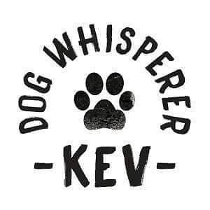 Dog Whisperer Kev Brisbane Region Preview