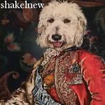 shakelnew