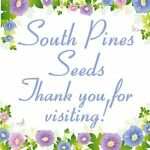 South Pines Seeds and More!