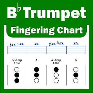 Bb Trumpet and Cornet Fingering Chart - A4 Guide - NEW