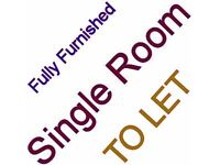 Large Single Room To Let - Fully Furnished - Single Person Only