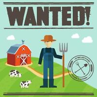 LOCAL FARMERS WANTED AS VENDORS
