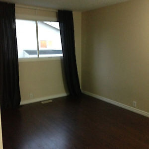 Large room for rent available now Edmonton Edmonton Area image 6