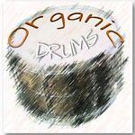 Organic Drums