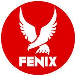 Fenix Tech Solutions