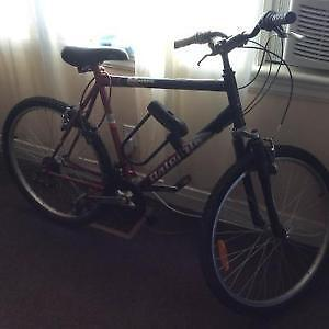 MOUNTAIN BIKE - REDUCED - MUST SELL - REASONABLE OFFERS