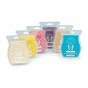 LOOKING FOR SCENTSY?? Kitchener / Waterloo Kitchener Area image 9