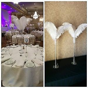 $15 Ostrich feather centerpieces for rent