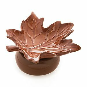 Fall / Winter Scentsy Windsor Region Ontario image 1