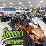 shaggyspowersports