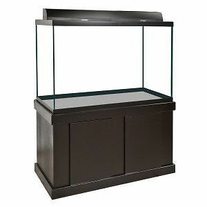 Large Fish Tank Kits