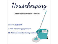 cleaner, housekeeper
