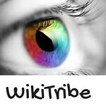 WikiTribe s Over the Rainbow Store