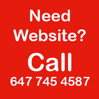 Professional Website Design For Your Business -Affordable Prices