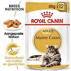Royal Canin Maine Coon Adult Pouch 12 zakjes