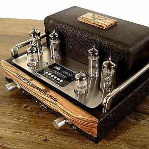 Stereo Tube Amp with preamp and Transmissionline speakers